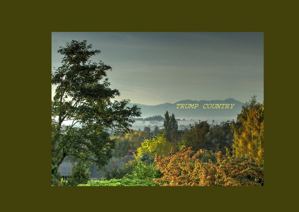 Name:  View from Victoria looking South.jpg Views: 181 Size:  106.8 KB